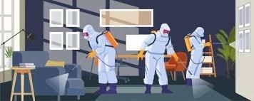 Płyn do ozonowania i usuwania bakterii, wirusów, grzybów z otoczenia - LABO DEZ