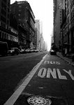 Nowy Jork. New York - only - fototapeta