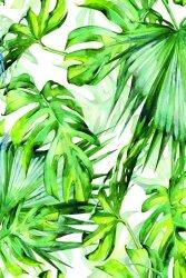 Tropikalne liście - plakat