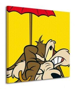 Looney Tunes (Wile E Coyote) - Obraz na płótnie