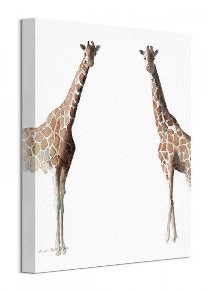 Stojące żyrafy - obraz na płótnie