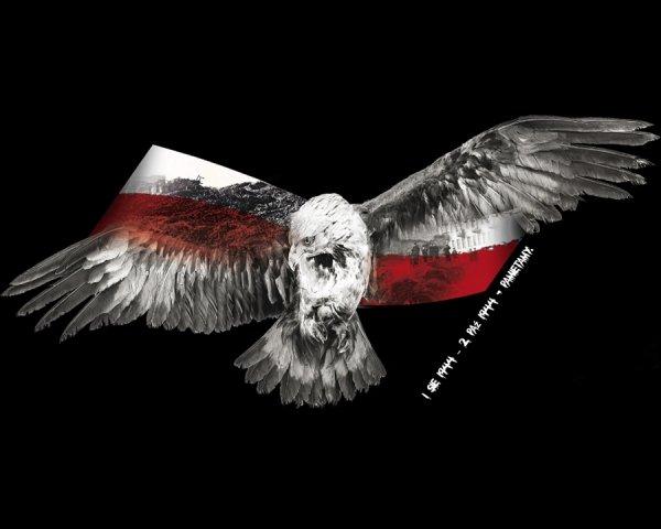 ORZEŁ Z POLSKĄ FLAGĄ NARODOWĄ PONAD GRUZAMI WARSZAWY
