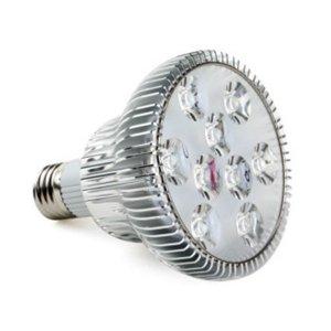 PAR 30 9W E27 LED