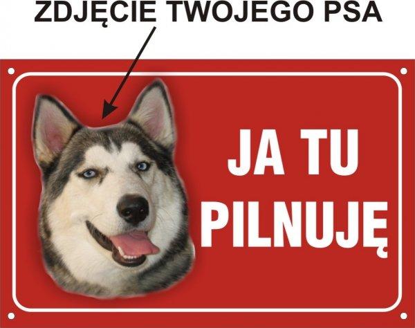 Tablica ze zdjęciem psa