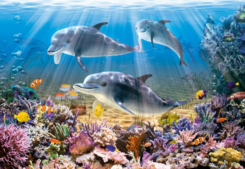 Puzzle 500 Elementów Delfiny