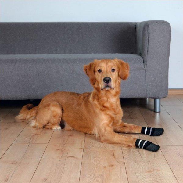 Trixie Skarpetki dla psa antypoślizgowe czarne S-M