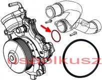 O-ring pompy wody Lancia Thema 3,0 CRD 46320306F