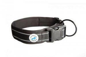 ALL FOR DOGS OBROŻA BLACK S 25-31cm