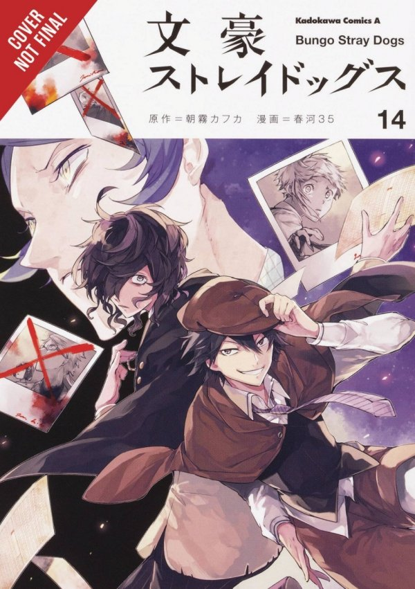 BUNGO STRAY DOGS GN VOL 14 *