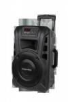Aktywna kolumna głośnikowa (z 2 mikrofonami bezprzewodowymi UHF, SD, Bluetooth, FM, USB) 20 Watt