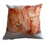 Foto Poszewka  na poduszkę  z mikrofibry Jedeka 40x40 wz.28 kot