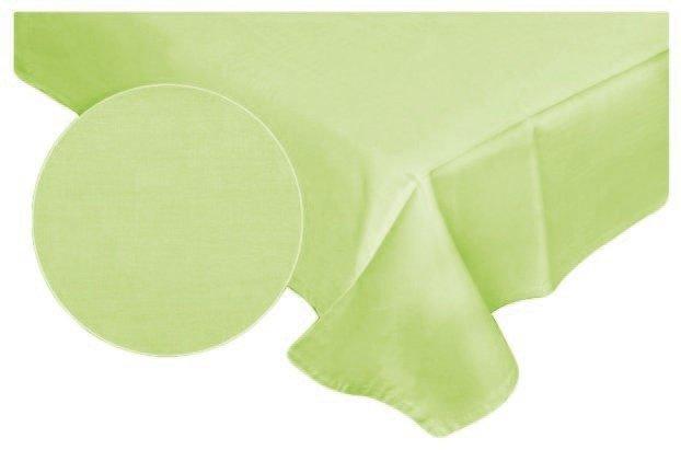 Prześcieradło RUBIN 100% bawełna 160x220 bez gumki wz. seledyn 509/6