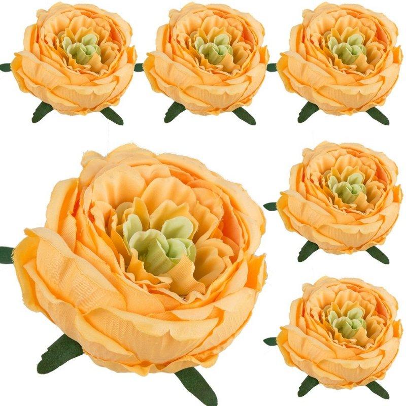 Peonia Główka Kwiatowa 6szt Ciepło-Żółty
