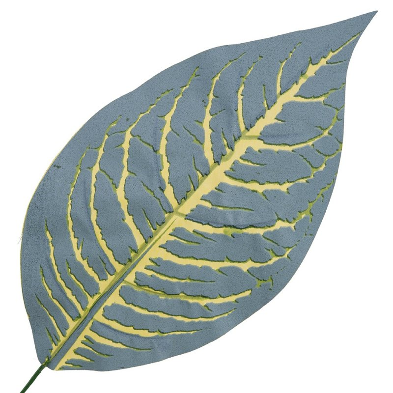Liść Difenbachii Żółte Żyłki
