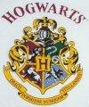 Piżama Harry Potter Hogwarts w gwiazdki