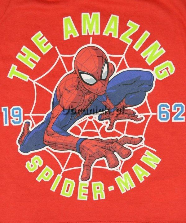 Bluzka Spiderman Amazing czerwona