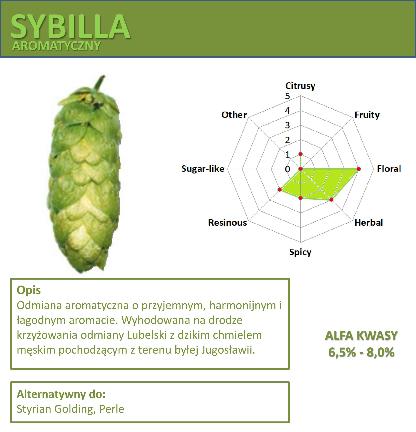 Chmiel Sybilla 50g