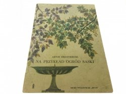 NA PRZYKŁAD OGRÓD SASKI - Artur Międzyrzecki 1965