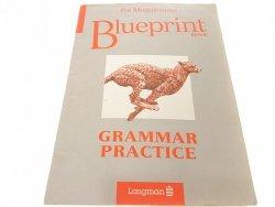 BLUEPRINT ONE GRAMMAR PRACTICE - Mugglestone 1993