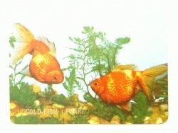 GOLD-FISH (PEARL) KALENDARZYK 1973