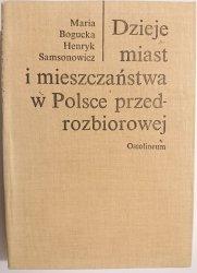 DZIEJE MIAST I MIESZCZAŃSTWA W POLSCE PRZEDROZBIOROWEJ - Bogucka 1986