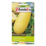 Dynia zwyczajna kabaczek ZŁOTY CEPELIN nasiona 2g PLANTICO