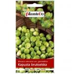 Kapusta brukselska GRONINGER nasiona warzyw 1g
