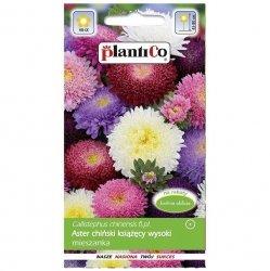 ASTER chiński KSIĄŻĘCY MIX nasiona kwiatów 1g