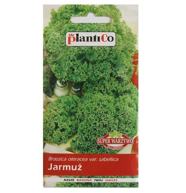 Jarmuż GRUENER KRAUSER nasiona warzyw 2g Plantico