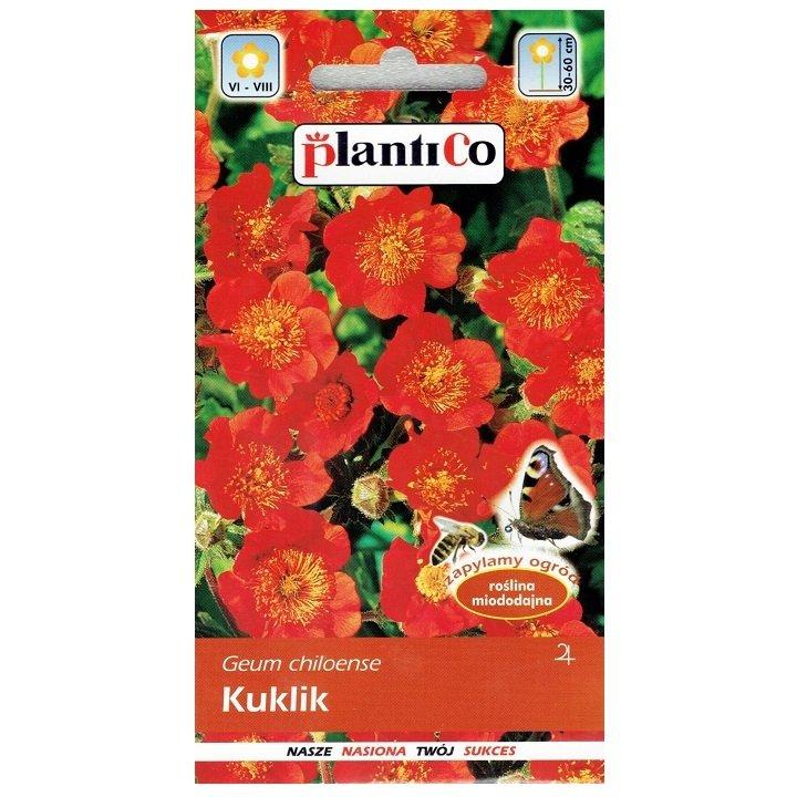 Kuklik chilijski nasiona Plantico
