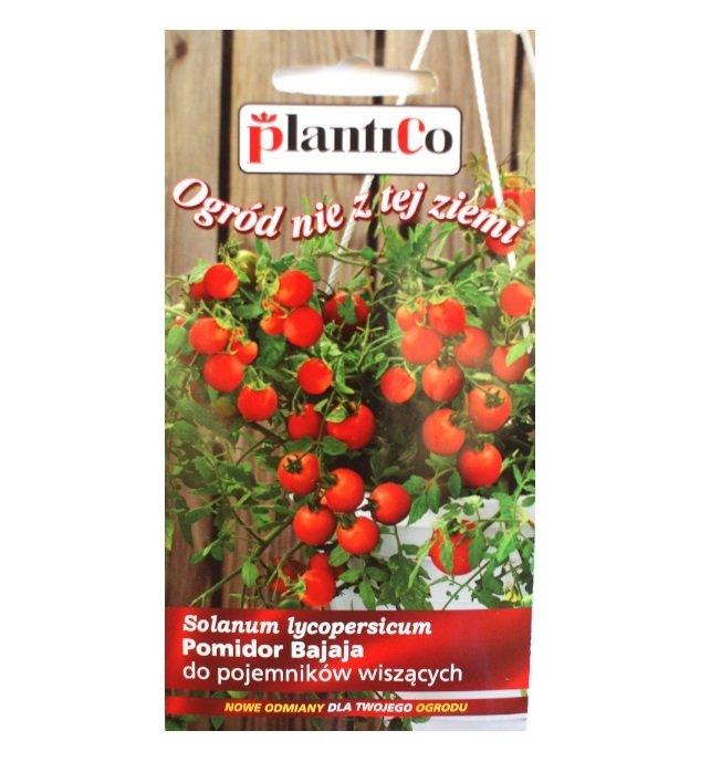 Pomidor Bajaja nasiona