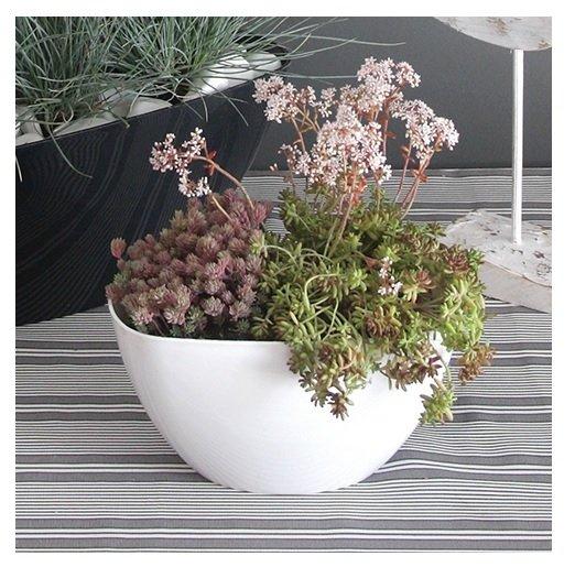 Doniczka miska Coubi Orchid biała