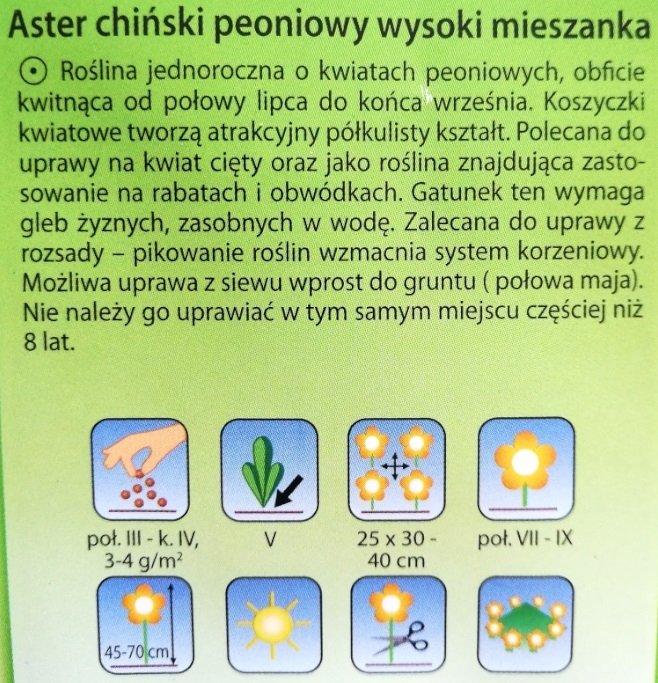 Aster peoniowy wysoki mix Plantico
