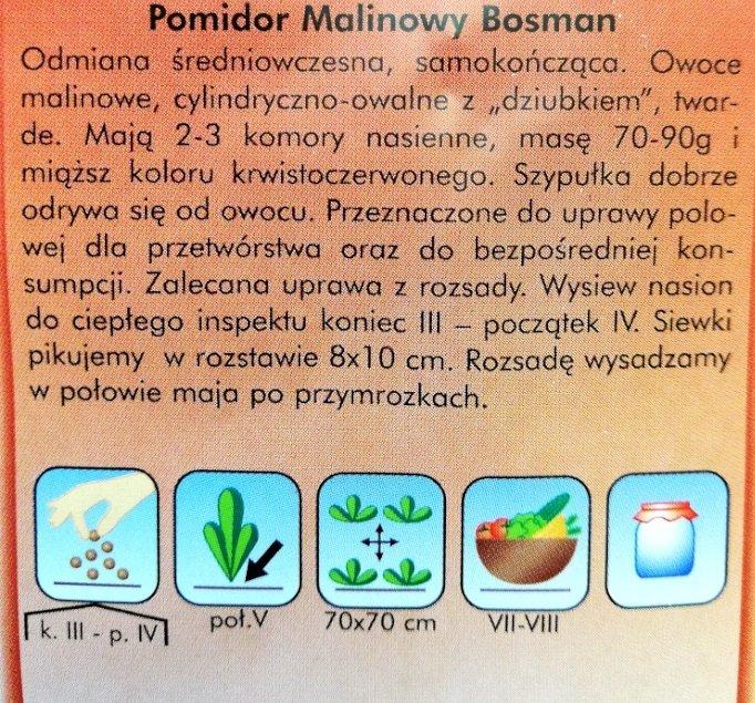 Pomidor Malinowy Boasman Plantico