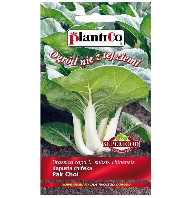 Pak Choi nasiona
