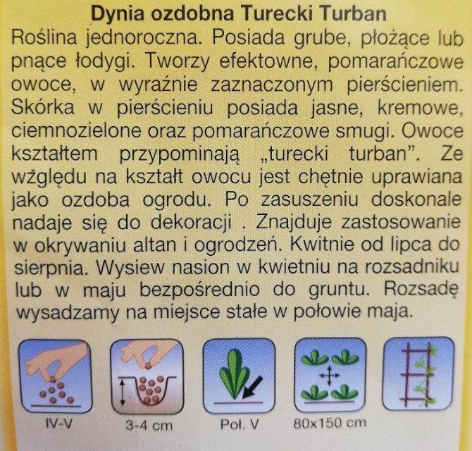 Dynia ozdobna turecki turban nasiona Plantico