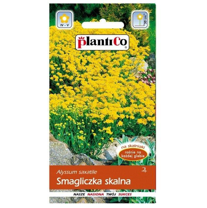 Smagliczka skalna nasiona Plantico
