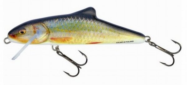 Salmo wobler SKINNER 10F RR - Real Roach