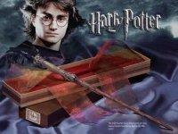 Harry Potter oryginalna różdżka - różne modele