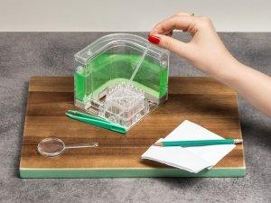 Akwarium dla mrówek DELUXE - podświetlane led zielone