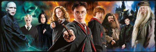 Harry Potter - Puzzle Panorama 1000 el. Czarodzieje