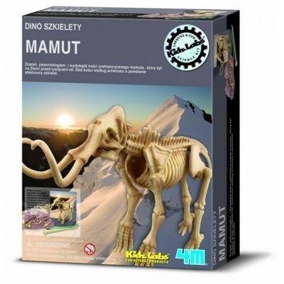 Wykopaliska Mamut - dino szkielet