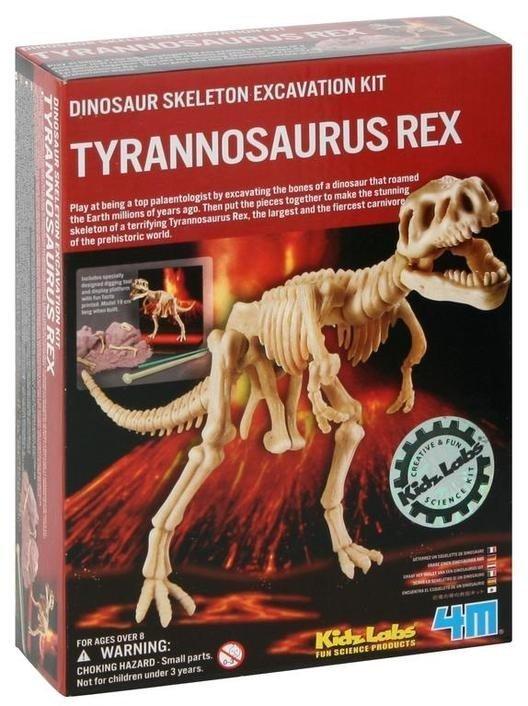 Wykopaliska Tyranozaurus Rex - dino szkielet