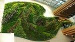 Jak stworzyć ogród wertykalny ?