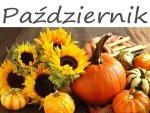 Kalendarz ogrodnika - Październik