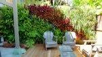 Ogród wertykalny w ogrodzie? Czemu nie! Poznaj szerokie zastosowanie ogrodów wertykalnych.
