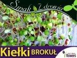 Nasiona na Kiełki - Brokuł (Brassica oleracea convar. botrytis var. cymosa) 10g