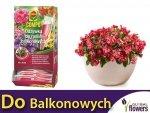 Odżywka do roślin balkonowych COMPO 30ml