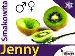 Aktinidia smakowita Sadzonka Kiwi Jenny - odmiana obupłciowa