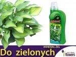 Agrecol Nawóz Mineral Żel do roślin zielonych 1l